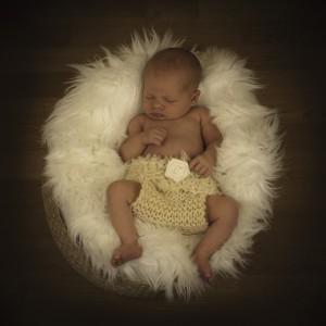 Baby fotograf landskrona